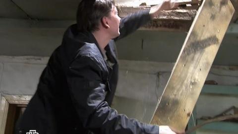 Лесник 2 сезон 10 серия, кадр 5