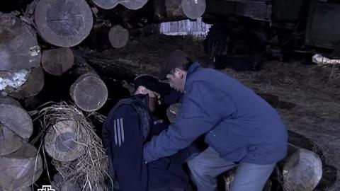 Лесник 2 сезон 14 серия