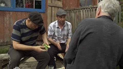 Лесник 2 сезон 19 серия, кадр 4