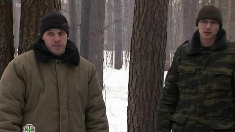 Лесник 2 сезон 46 серия, кадр 3