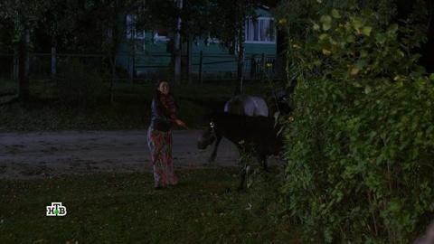 Лесник 4 сезон 60 серия, кадр 5