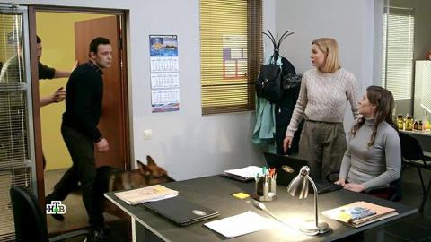 Мухтар. Новый след 1 сезон 103 серия, кадр 2
