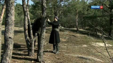 Последний янычар 1 сезон 57 серия, кадр 2