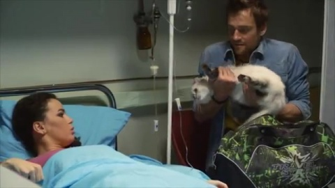 Светофор 1 сезон 12 серия, кадр 12